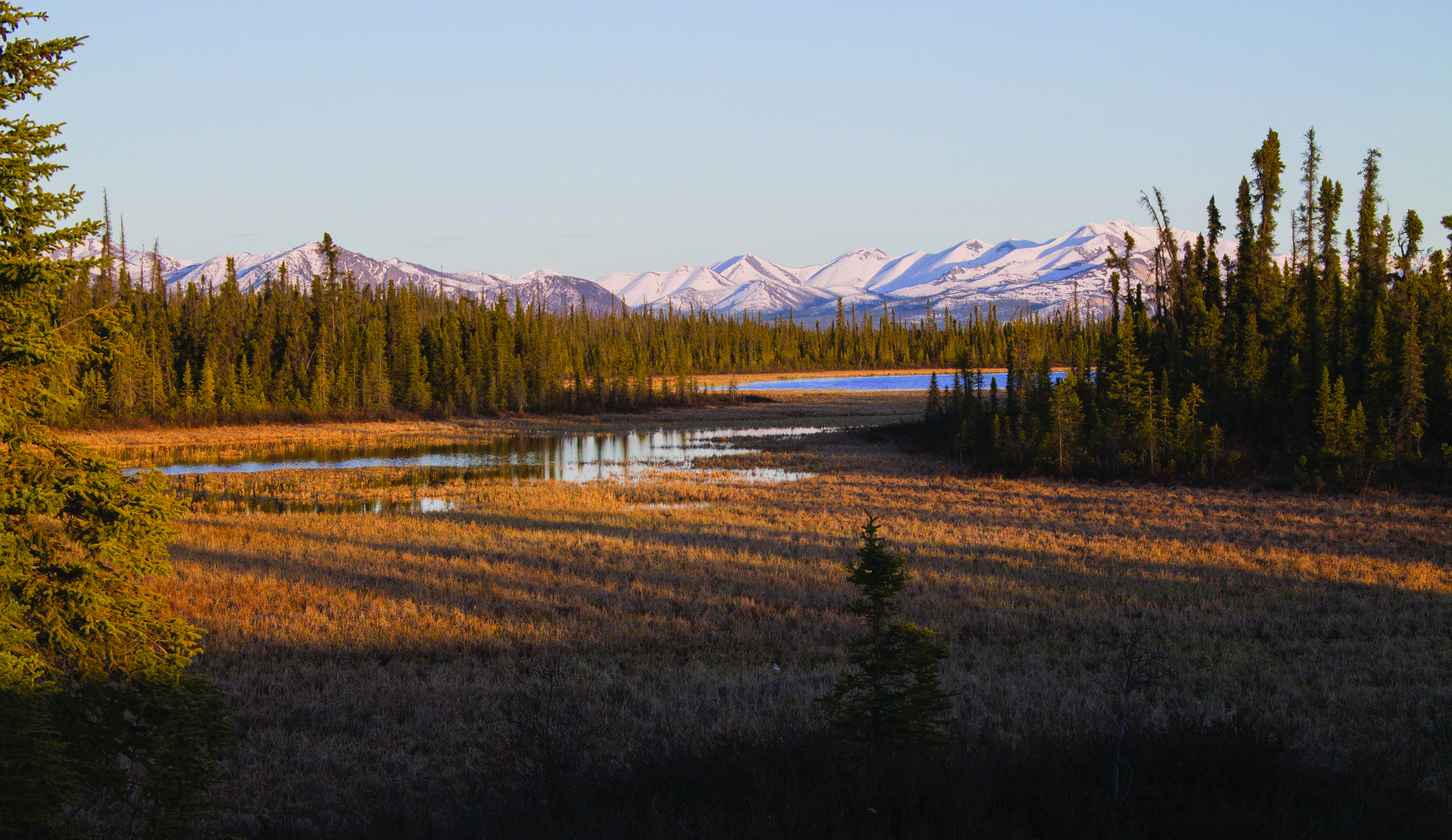 Picture of the Ahtna Region - Image Courtesy of Ahtna, Incorporated